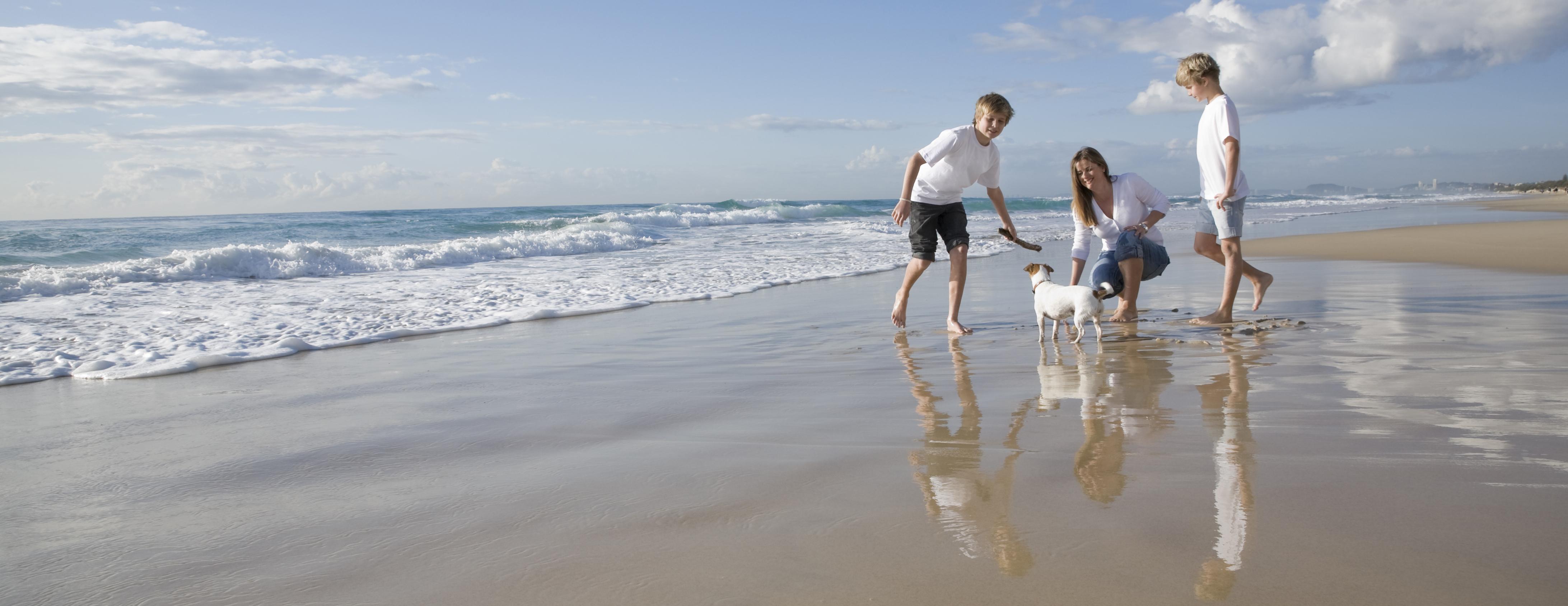 Dog Friendly beach at South Durras